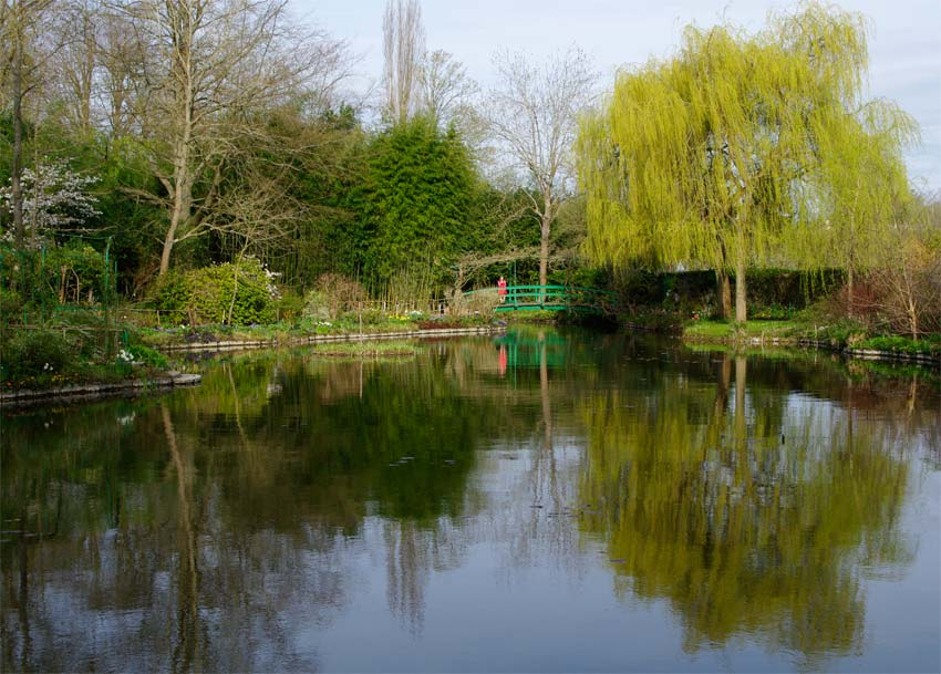 So many great views across this lake - Giverny - Monet's Garden
