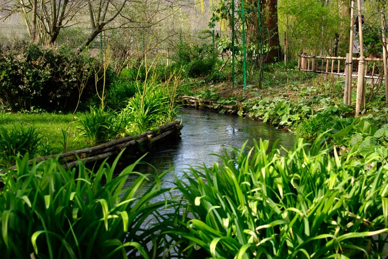 The stream feeds the very picturesque lake - Giverny - Monet's Garden