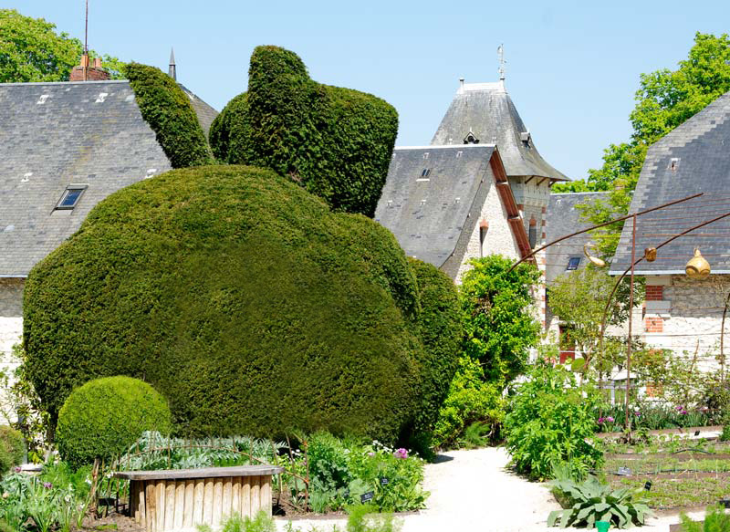 Rabbit Topiary in the Children's Vegetable Garden - Chaumont sur Loire