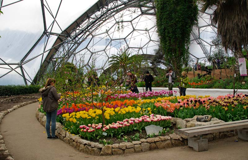 Inside the Mediterranean Biome - Eden Project