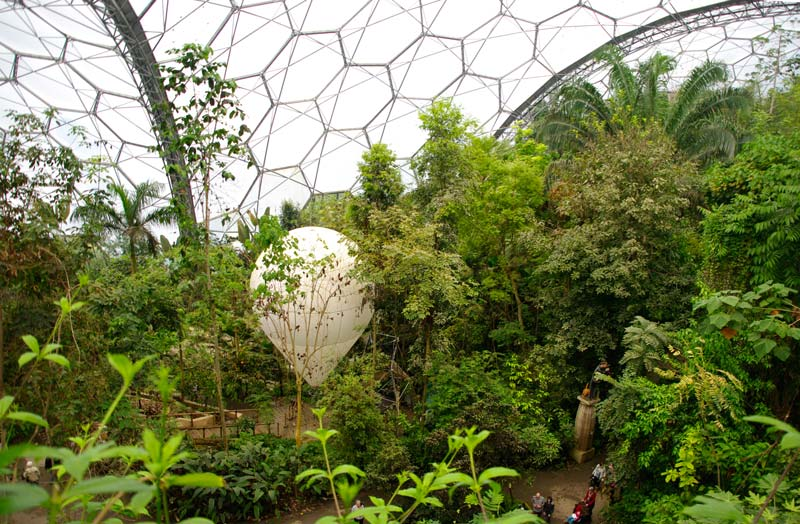 The Tropical Biome - Eden Project