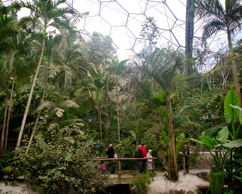 Tropical Biome - Eden Project